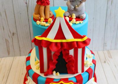 A Baby Circus